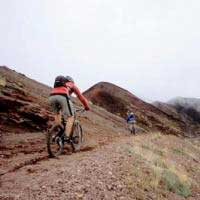 Immagine tuor Etna in MTB half day tour